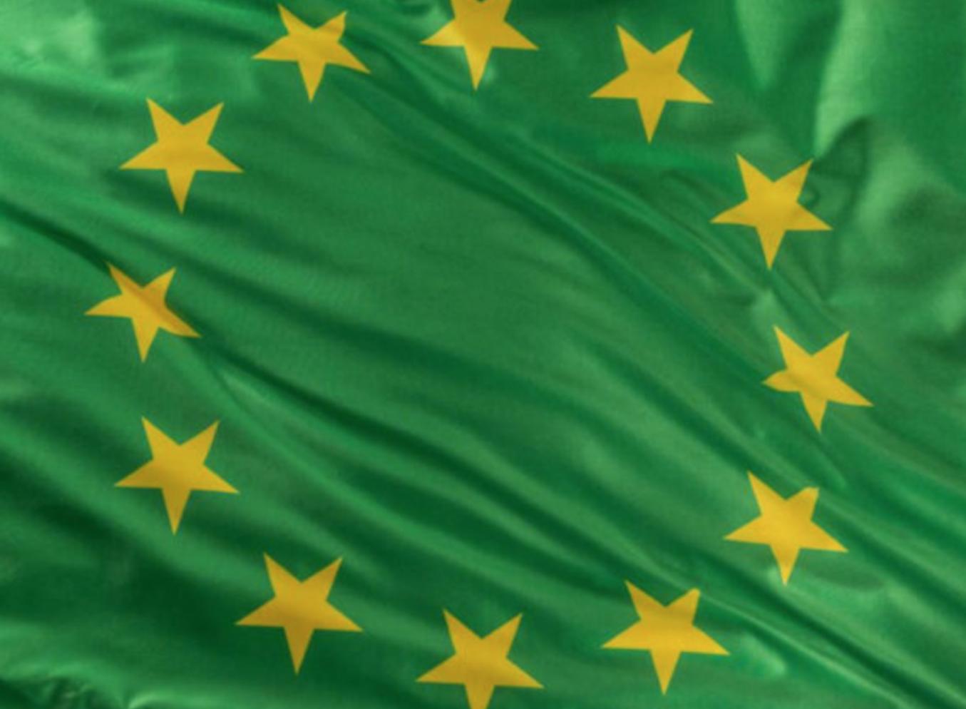 Europäische Jugendgarantie meets European Green Deal